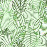 Green foliage seamless pattern of outline leaves Stock Photos