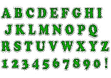 Green font Stock Images