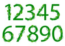 Green font numbers from 1 to 0 with leaves. Vector illustration vector illustration