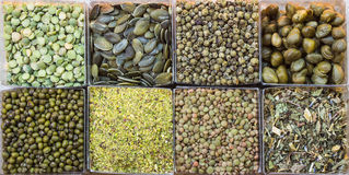 Green Food. Eight small squares of green food Royalty Free Stock Photos