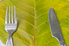 Green food phuket ,Thailand Royalty Free Stock Photo