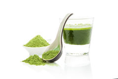 Green food supplements. Wheat grass powder on spoon, green barley grass juice in glass on white background with reflection. Natural organic healthy lifestyle Stock Photos