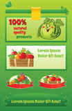 Green food template with text space. And cartoon fruit illustrations royalty free illustration
