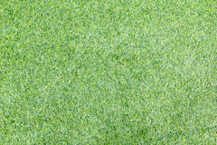 Green football field grass on background Royalty Free Stock Images