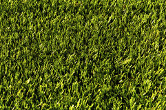 Green football field grass.Texture Royalty Free Stock Image
