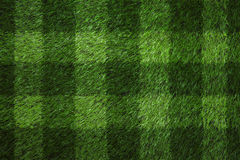 Green football field. Grass texture with stripe background Stock Images