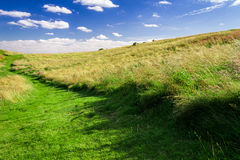 Green footpath in meadow Stock Photo