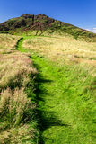 Green footpath to the top of hill Stock Images
