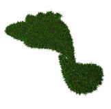 Green Footprint Royalty Free Stock Photography