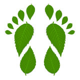 Green footprint. Made by leaves with shadow stock illustration