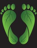 Green Footprints Stock Photo