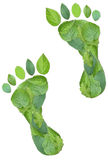Green footprints. Made by real leaves isolated on white Royalty Free Stock Image