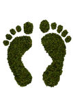 Green Footprints isolated on white. A pair of footprints in green leaf design isolated on a white background Stock Images