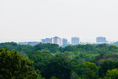 Green forest against distant buildings Stock Photography