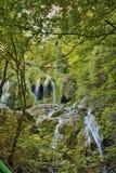 Green forest around Krushuna Waterfalls, Bulgaria Stock Photo