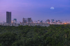 Green forest in big city under moon sky twilight. Large green forest in big business district city under early morning moon sky twilight Stock Photos