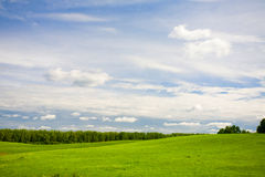 Green forest and blue sky Royalty Free Stock Photography