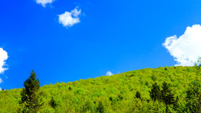 Green forest and blue sky. Landscape in Bieszczady Mountains, Poland Stock Photos