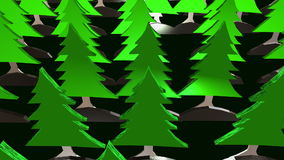 Green forest of fir trees stock footage