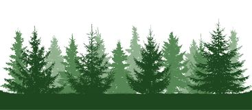 Green forest, fir trees silhouette. Isolated on white background stock illustration