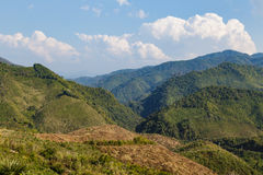 Green forest on high mountain in Laos Royalty Free Stock Photo