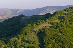 Green Forest Hill stock image
