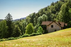 Green forest and house in Bled, Slovenia