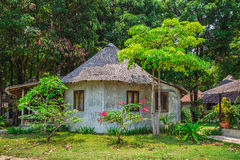 Green forest and huts in a misty morning Stock Photography