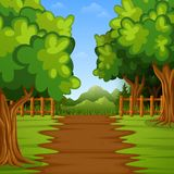 Green forest landscape background Vector Illustration
