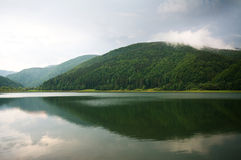 Green forest on mountain lake with dramatic storm clouds Royalty Free Stock Photos