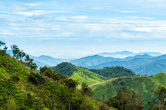 Green forest on mountain range landscape with blue and cloudy sky Stock Photo