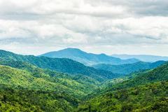 Green forest on mountain range landscape on cloudy day Royalty Free Stock Image