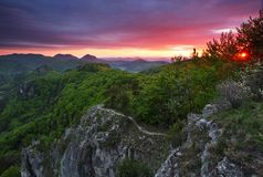 Green forest mountain at sunset Stock Image