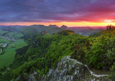 Green forest mountain at sunset Stock Photos