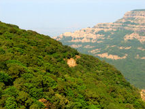 Green forest on mountains Royalty Free Stock Photography