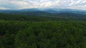 Green forest and mountains against blue sky, aerial view stock footage
