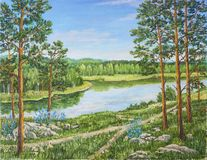 Green forest near river in sunny day. Landscape, pine and birch trees, stones, green grass on the shore of a river stock images