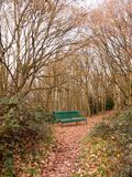 Green forest public bench empty solitude tree arch autumn winter Stock Photography