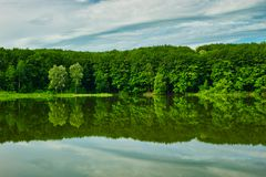 Green forest reflected in the lake stock photo