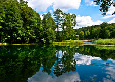 Green Forest Reflection in the Lake Royalty Free Stock Images