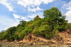 Green forest on rocky shore Royalty Free Stock Photography
