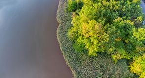 Green forest, swamp and small river captured from above with a drone. stock images