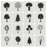 Green forest trees design elements Stock Photography