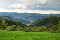 Green forest and valley landscape Royalty Free Stock Images