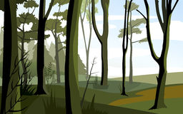 Green forest vector illustration Stock Image