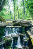 Green forest with a waterfall Royalty Free Stock Photography