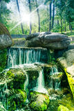 Green forest with a waterfall Royalty Free Stock Image