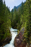 Green forest waterfall stream water Tatra mountains Carpathians Royalty Free Stock Image