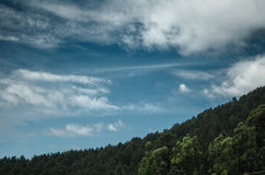 Green Forest and White and Blue Sky during Daytime Stock Images