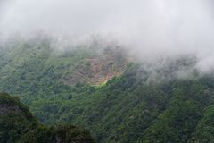 Green forested hill in dense clouds. Madeira island. Green forested hill in dense clouds. Portuguese island of Madeira royalty free stock photos